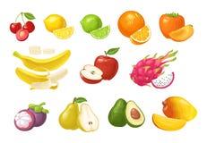Frutos tropicais ajustados Ilustração lisa da cor do vetor isolada no branco Foto de Stock
