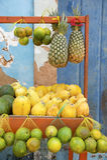 Frutos tropicais do mercado brasileiro dos fazendeiros fotos de stock royalty free
