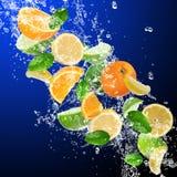 Frutos tropicais Fotografia de Stock