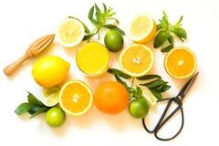Frutos tropicais para fazer o suco do limão, laranja, cal pelo juicer de madeira no branco Vista superior Imagens de Stock Royalty Free