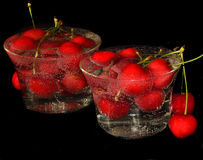 Frutos vermelhos Fotografia de Stock