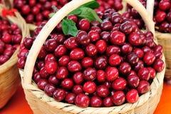 Frutos vermelhos da cereja fotos de stock