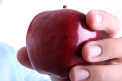 Frutta fotografia stock libera da diritti