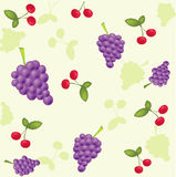 Frutta illustrazione di stock