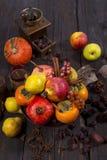 Frutta antunnale lurar ambientazionerustica Royaltyfria Bilder