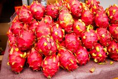 Frutta appena raccolta del cactus di pitaya su una stalla di via in Urumc Immagine Stock Libera da Diritti