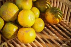 Frutta arancio fresca in frutteto, frutta pulita o fondo popolare della frutta, frutta del mercato dal frutteto di agricoltura Immagini Stock Libere da Diritti