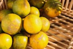Frutta arancio fresca in frutteto, frutta pulita o fondo popolare della frutta, frutta del mercato dal frutteto di agricoltura Immagini Stock