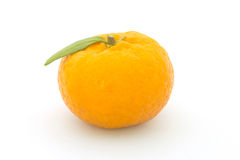 Frutta arancio su bianco Immagini Stock