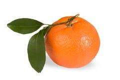 Frutta arancione Fotografia Stock Libera da Diritti