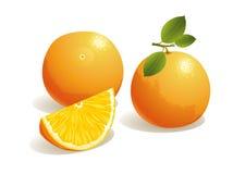 Frutta arancione Immagini Stock