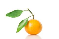Frutta arancione isolata Fotografie Stock Libere da Diritti
