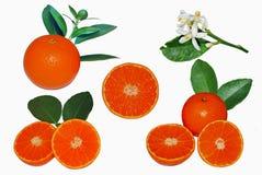Frutta arancione isolata su priorità bassa bianca fotografie stock