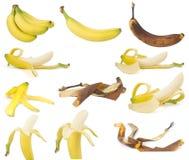 Frutta, banane Fotografie Stock