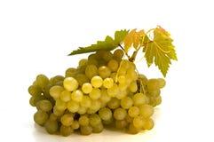 Frutta bianca e verde dell'uva con le foglie isolate su fondo bianco Fotografia Stock