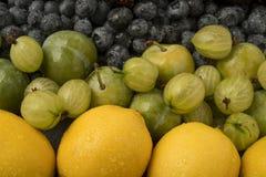 Frutta Colourful Fotografia Stock Libera da Diritti