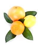 Frutta con i fogli verdi Immagine Stock Libera da Diritti
