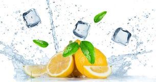 Frutta con la spruzzata dell'acqua Fotografia Stock Libera da Diritti