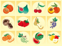 Frutta con priorità bassa Immagini Stock