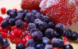 Frutta congelata Fotografia Stock