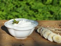 Frutta del briciolo del yogurt Fotografia Stock