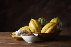 Frutta del cacao immagine stock libera da diritti
