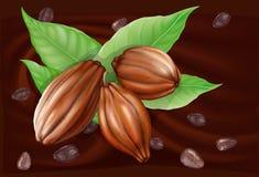 Frutta del cacao su un fondo del cioccolato Fotografie Stock