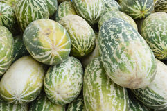 Frutta del cantalupo Immagine Stock