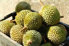 Frutta del Durian in un canestro Fotografia Stock