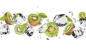 Frutta del ghiaccio Immagini Stock