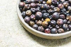 Frutta del ginepro Fotografia Stock Libera da Diritti