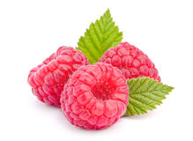 Frutta del lampone Immagini Stock