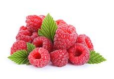 Frutta del lampone con la foglia Immagini Stock