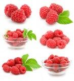 Frutta del lampone rosso dell'accumulazione isolata Immagini Stock Libere da Diritti