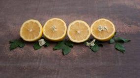 Frutta del limone Fotografia Stock