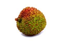 Frutta del litchi immagini stock