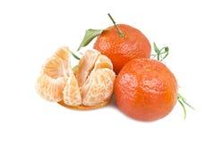 Frutta del mandarino o del mandarino Fotografie Stock