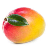 Frutta del mango Fotografie Stock