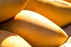 Frutta del mango Immagine Stock Libera da Diritti