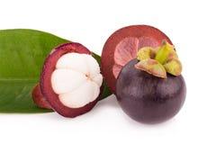 Frutta del mangostano isolata su bianco Fotografia Stock Libera da Diritti