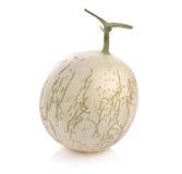 Frutta del melone del cantalupo su fondo bianco Immagine Stock