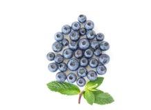 Frutta del mirtillo Fotografie Stock
