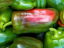 Frutta del pepe Fotografia Stock Libera da Diritti