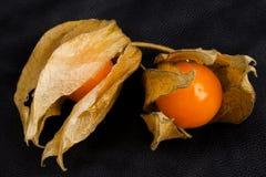 Frutta del Physalis Immagine Stock Libera da Diritti