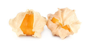 Frutta del Physalis, bacca del capo isolata su bianco Fotografia Stock Libera da Diritti