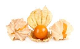 Frutta del Physalis, bacca del capo isolata su bianco Fotografie Stock