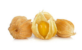 Frutta del Physalis isolata sui precedenti bianchi Immagini Stock Libere da Diritti