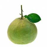 Frutta del pomelo isolata su fondo bianco Fotografia Stock Libera da Diritti