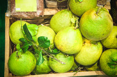Frutta del pomelo in scatola di legno alla via del mercato Immagini Stock Libere da Diritti