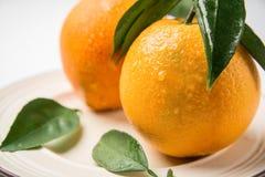 Frutta deliziosa dell'arancia navel due Fotografia Stock Libera da Diritti